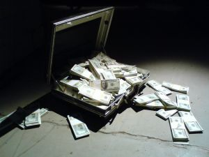 case_with_dollars_2